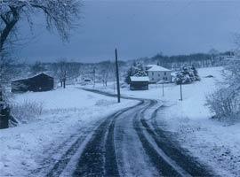 Bloomingdale (looking NE from farm)
