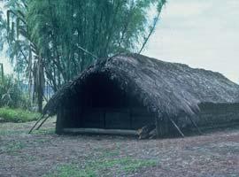 A Kewa men's house